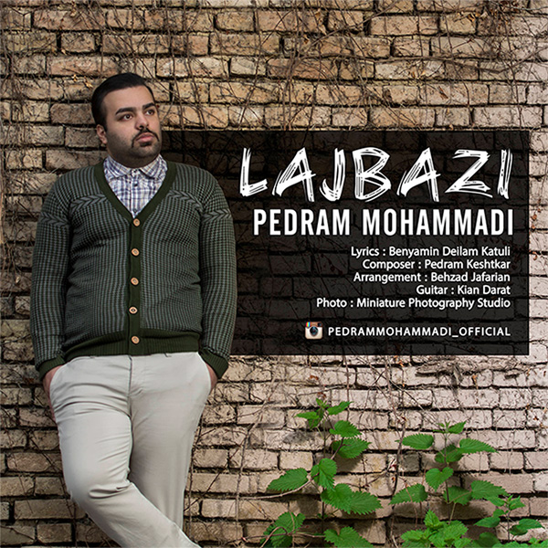 Pedram Mohammadi - Lajbazi
