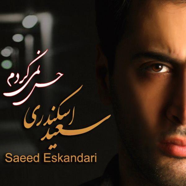 Saeed Eskandari - Hes Nemikardam