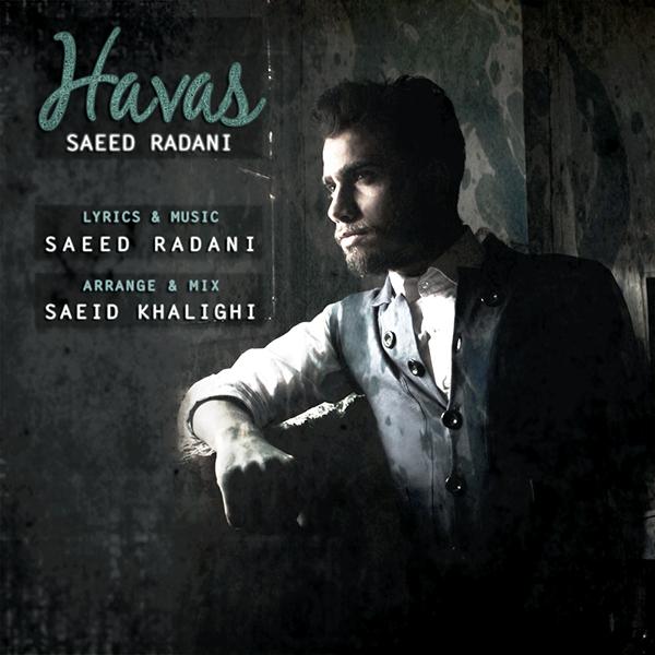 Saeed Radani - Havas