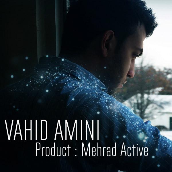 Vahid Amini - Ba Ghalb Man Chikar Dari