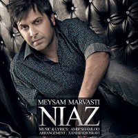 Meysam-Marvasti-Niaz
