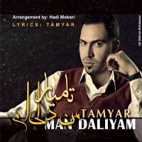 Tamyar-Dali-Damad