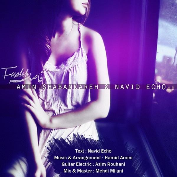 Amin Shabankareh & Navid Echo - Faseleh