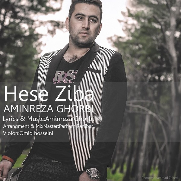 Aminreza Ghorbi - Hese Ziba
