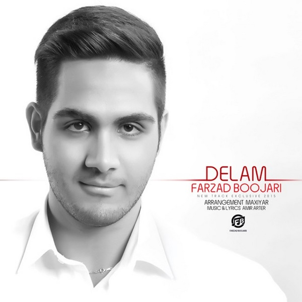 Farzad Boojari - Delam