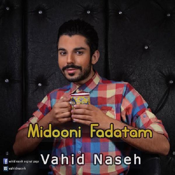 Vahid Naseh - Midooni Fadatam