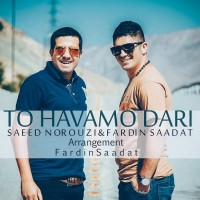 Fardin-Saadat-To-Havamo-Dari-(Ft-Saeed-Norouzi)