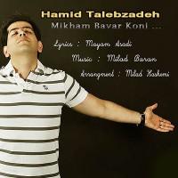 Hamid-Talebzadeh-Mikham-Bavar-Koni