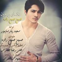 Hossein-Hosseinzadeh-Aksaye-Bi-Jon