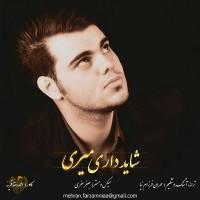 Mehran-Farzamnia-Shayad-Dari-Miri