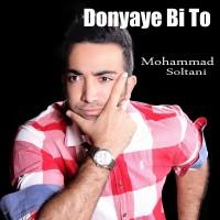 Mohammad-Soltani-Donyamo-Bordi