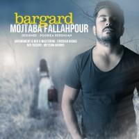 Mojtaba-Fallahpour-Bargard