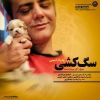 Pedram-Amini-Nime-Shab