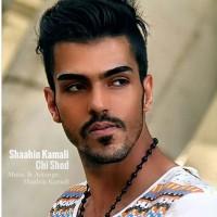 Shaahin-Kamali-Chi-Shod