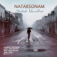 Shahab-Mozaffari-Natarsonam