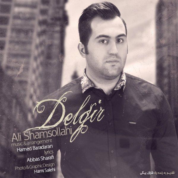 Ali Shamsollahi - Delgir