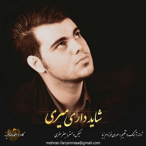 Mehran Farzamnia - Shayad Dari Miri