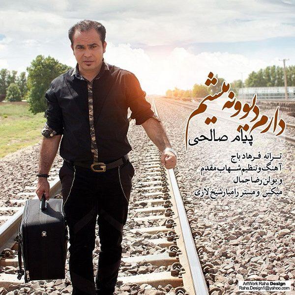Payam Salehi - Daram Divoone Misham