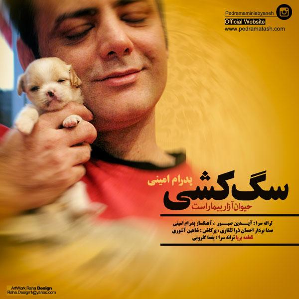 Pedram Amini - Faghat Ye Guitar