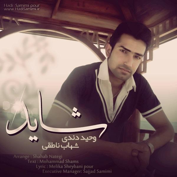 Vahid Dendi - Shayad (Ft Shahab Nateghi)