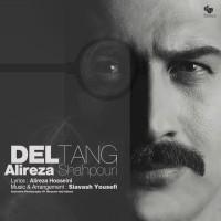 Alireza-Shahpouri-Deltang