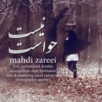 Mahdi-Zareei-Havaset-Nist
