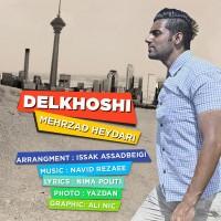 Mehrzad-Heydari-Delkhoshi