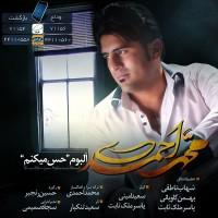 Mohammad-Ahmadi-Nefrin