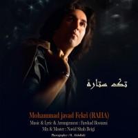 Mohammad-Javad-Fekri-Tak-Setareh