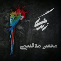 Mohsen-Mollaghadimi-Zendegi-Ai-Zendegi