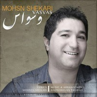 Mohsen-Shekari-Vasvas
