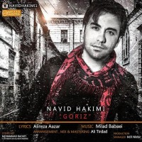 Navid-Hakimi-Goriz