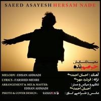 Saeed-Asayesh-Hersam-Nade