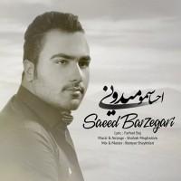 Saeed-Barzegari-Ehsasamo-Midooni