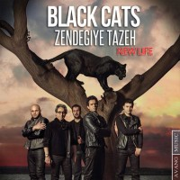 Black-Cats-Zendegiye-Tazeh