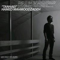 Hamed-Mahmoodzadeh-Tanhaei