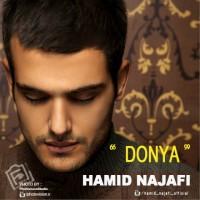 Hamid-Najafi-Donya