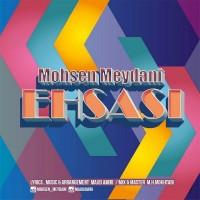 Mohsen-Meydani-Ehsasi