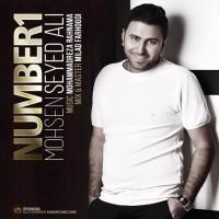 Mohsen-Seyed-Ali-Number-1