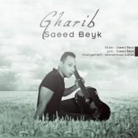 Saeed-Beyk-Deltangi