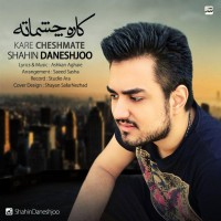 Shahin-Daneshjoo-Kare-Cheshmate