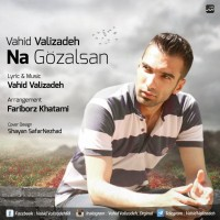 Vahid-Valizadeh-Na-Gozalsan