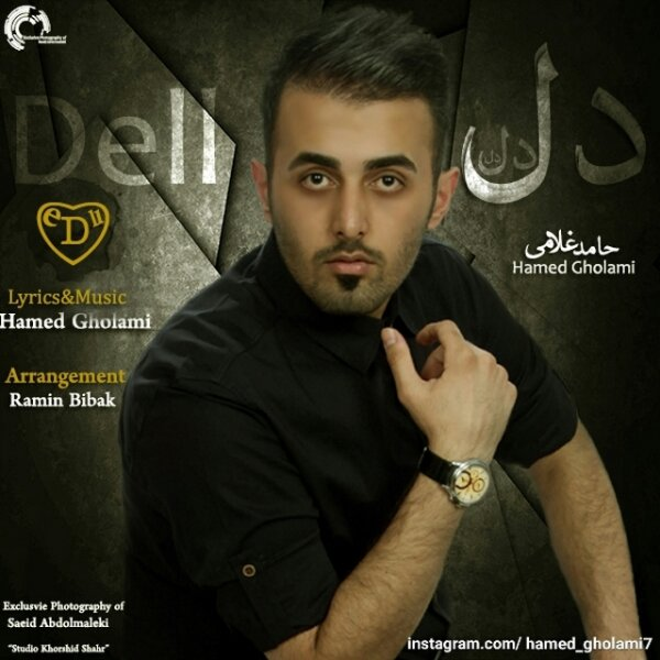 Hamed Gholami - Dell