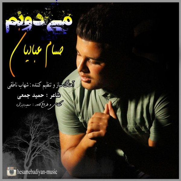 Hesam Ebadian - Midoonam