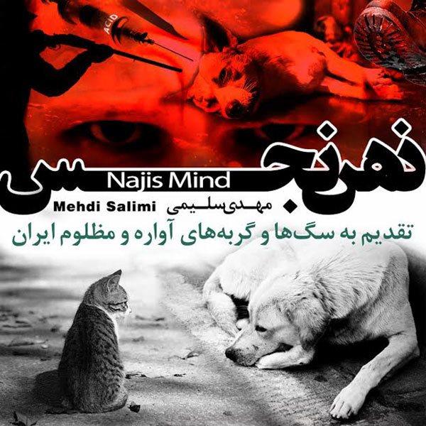 Mehdi Salimi - Zehne Najes