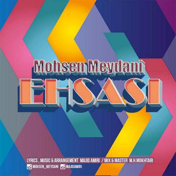 Mohsen Meydani - Ehsasi