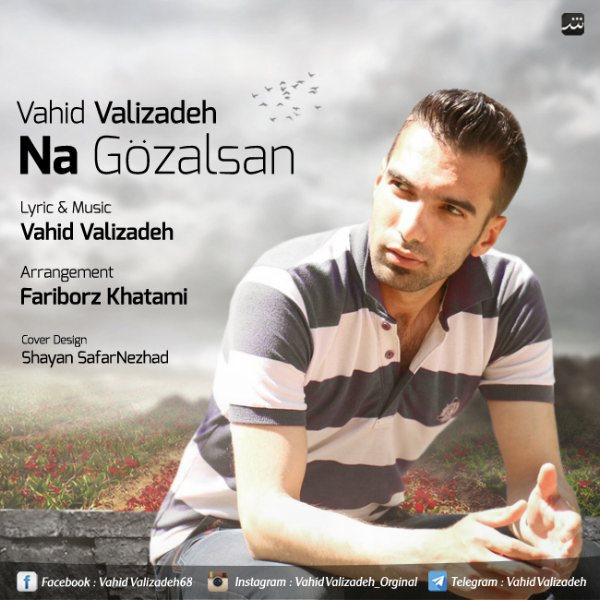 Vahid Valizadeh - Na Gozalsan