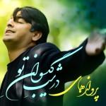 Parvaz-Homay-Dar-Shabe-Gisovaane-To-album