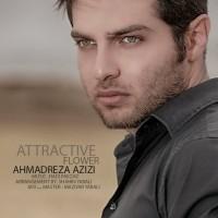 Ahmadreza-Azizi-Gole-Delfarib