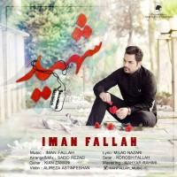Iman-Fallah-Shahid